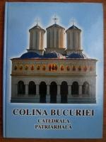 Anticariat: Mihai Hau - Colina bucuriei, catedrala patriarhala