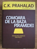 C. K. Prahalad - Comoara de la baza piramidei. Erdaicarea saraciei prin profit