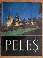 Anticariat: Peles, Album foto